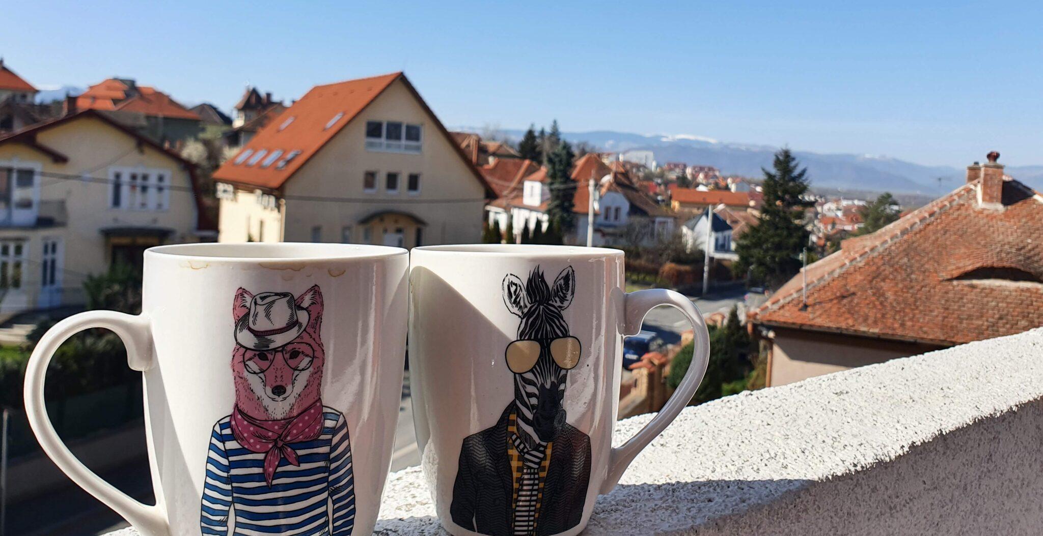 vedere Sibiu cu copiii
